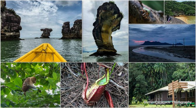 Bako National Park, Kuching – My 2D1N Experience